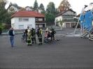 BSA FireDragon 2008_65