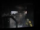 BSA FireDragon 2008_73