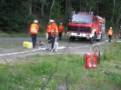 Einsatzübung Verkehrsunfall 2009_3