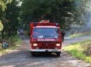 HVB Waldbrandübung 2009_20