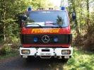 HVB Waldbrandübung 2009_2