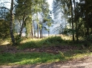 HVB Waldbrandübung 2009_8