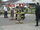 Bezirksentscheid 2011_13